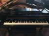 gallery-piano-249