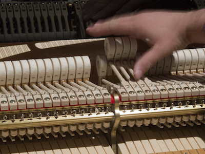 What Is A Registered Piano Technician?