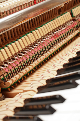 What Wood Is Best For Making A Piano