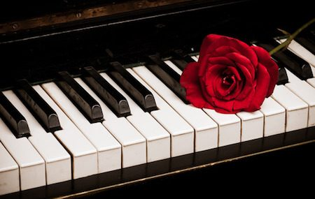 5 Piano Care Tips